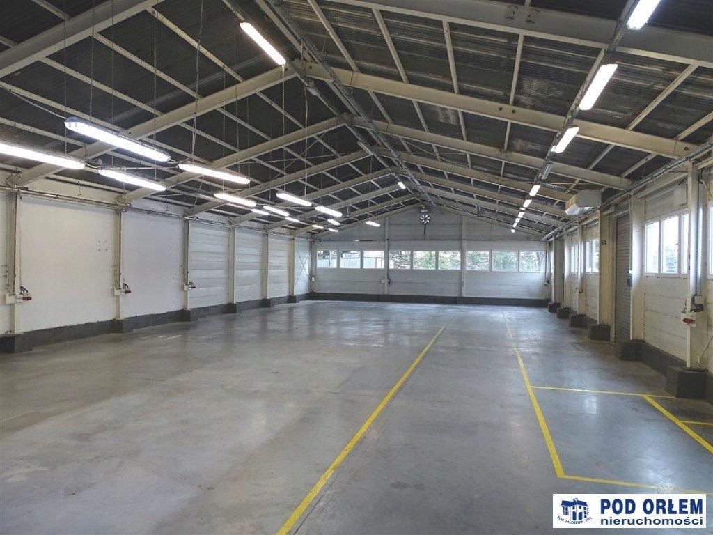 Na wynajem Bielsko-Biała, Wapienica, 530,00 m²