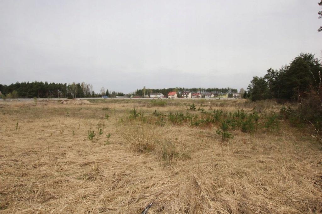 Działka, Bliżyn, Bliżyn (gm.), 29212 m²