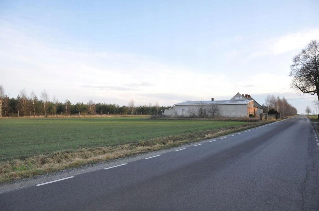 Dom, Parzew, Kotlin (gm.), 100 m²