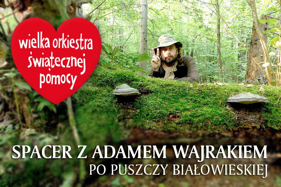 Spacer po Puszczy Białowieskiej z Adamem Wajrakiem