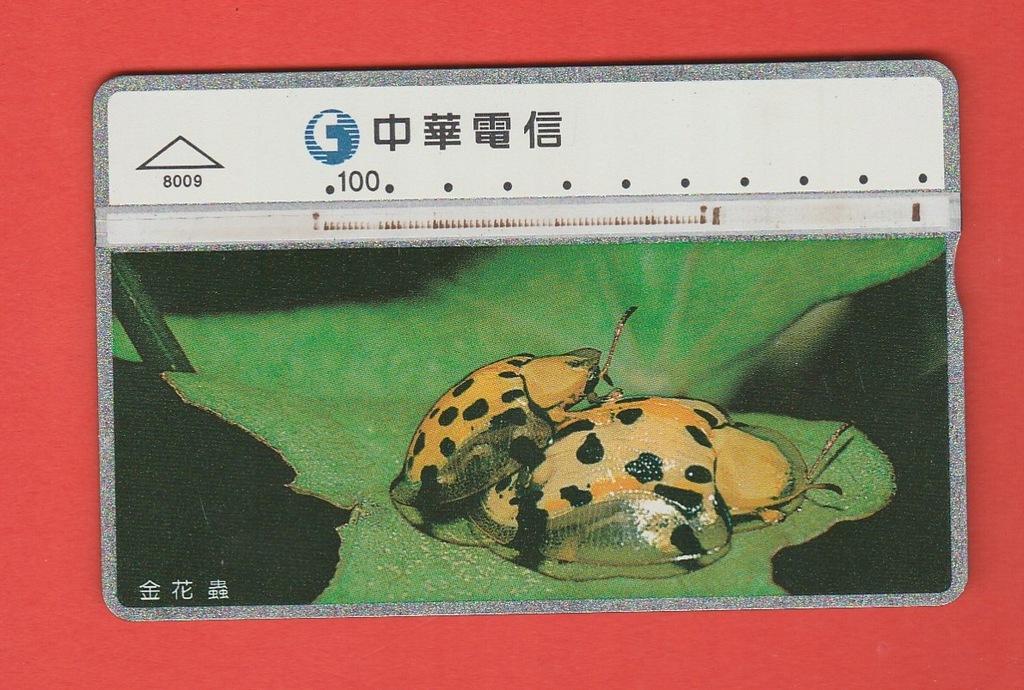 TAJWAN fauna chrząszcze / 8009 / seria 830F