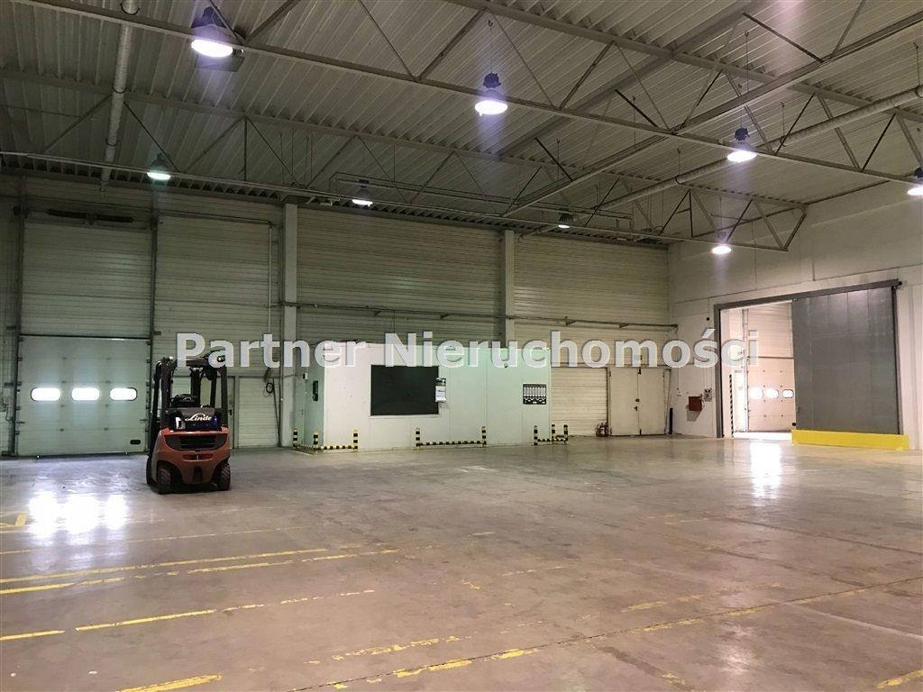 Magazyny i hale, Toruń, 3200 m²