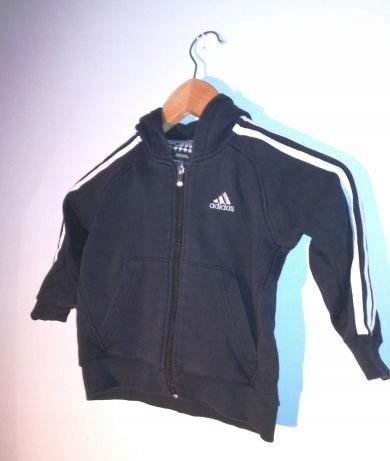 Adidas, bluza dla chłopca, rozmiar 104