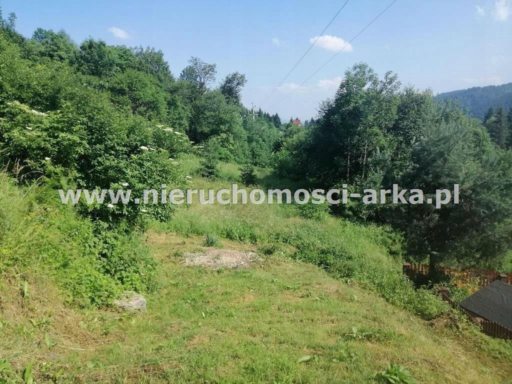 Działka, Szczawa, Kamienica (gm.), 1200 m²