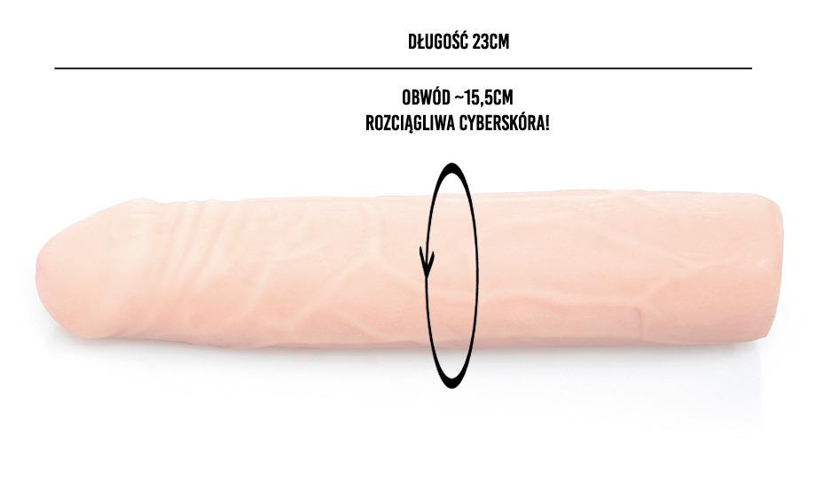 Idealny rozmiar penisa według kobiet. Jakie penisy są najlepsze