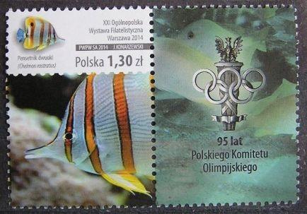 Fi 4572 - luzak, Ryby z przyw. PKOl