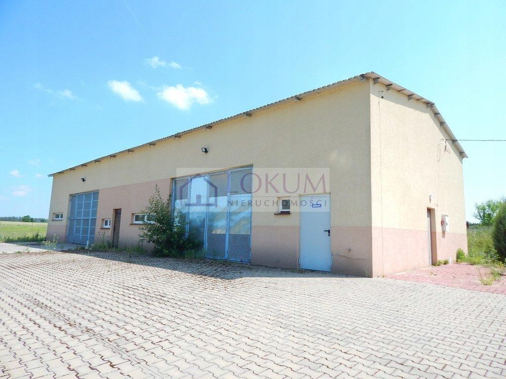 Magazyny i hale, Zwoleń (gm.), 256 m²