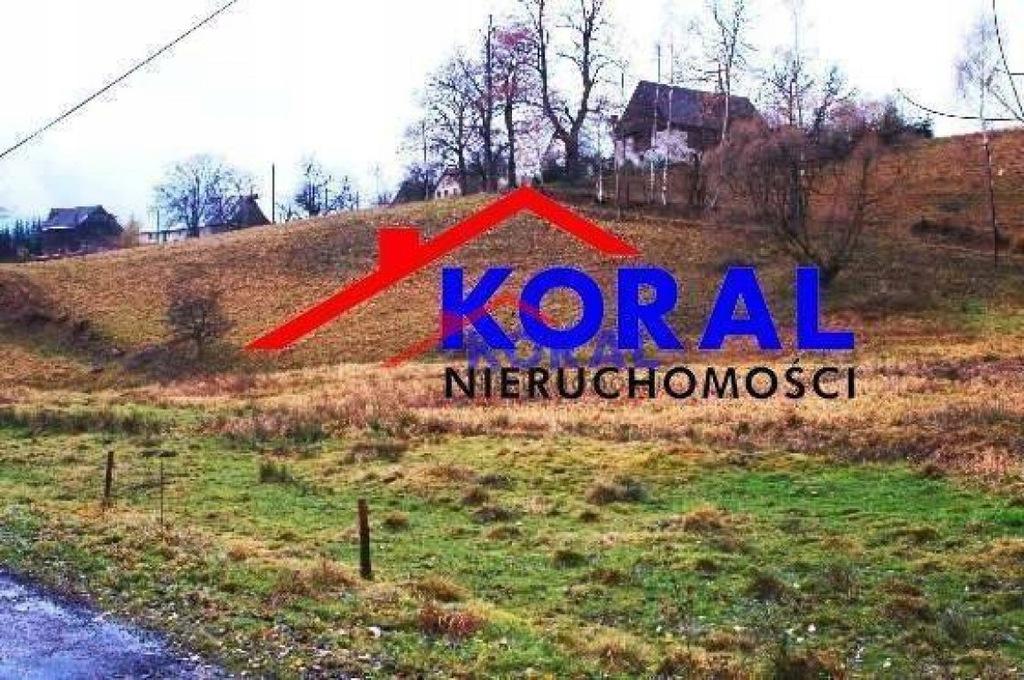 Działka Międzylesie, kłodzki, 9200,00 m²