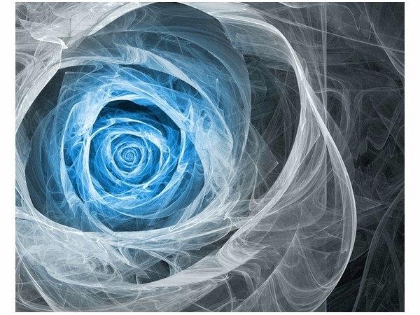 40x50cm Obraz druk Blue Rose obraz druk dekoracja