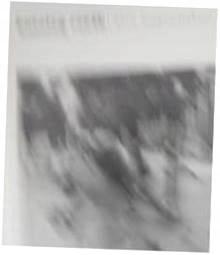 Katalog rzeźb Aliny Szapocznikow - J. Gola