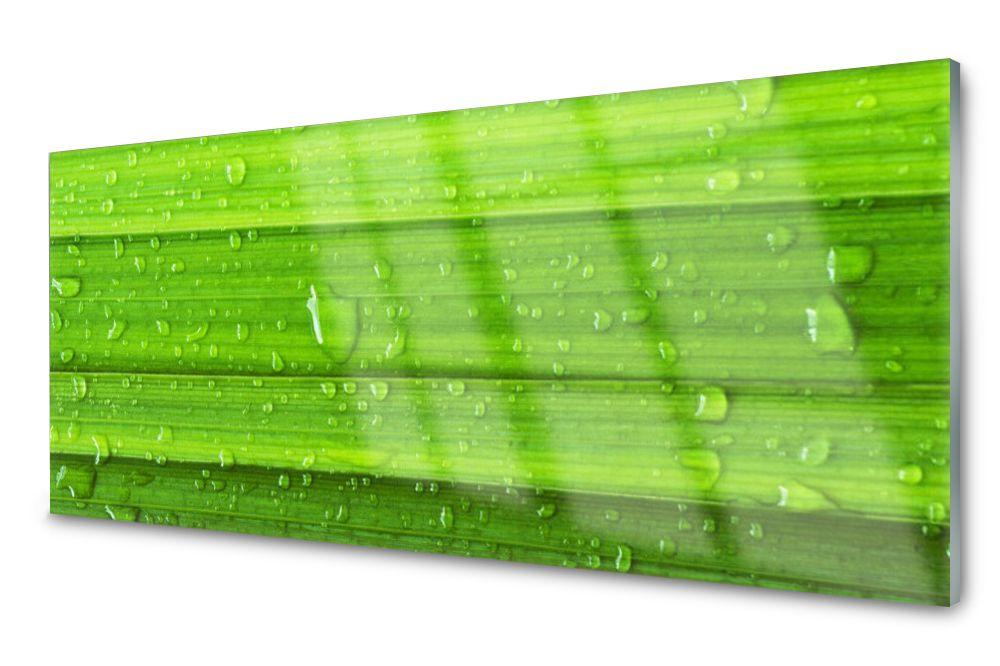 Lacobel Panel Szklany Ścienny Trawa Roślina 120x60