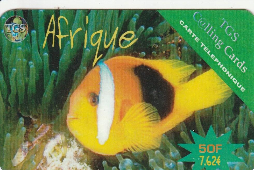 Francja - Ryba