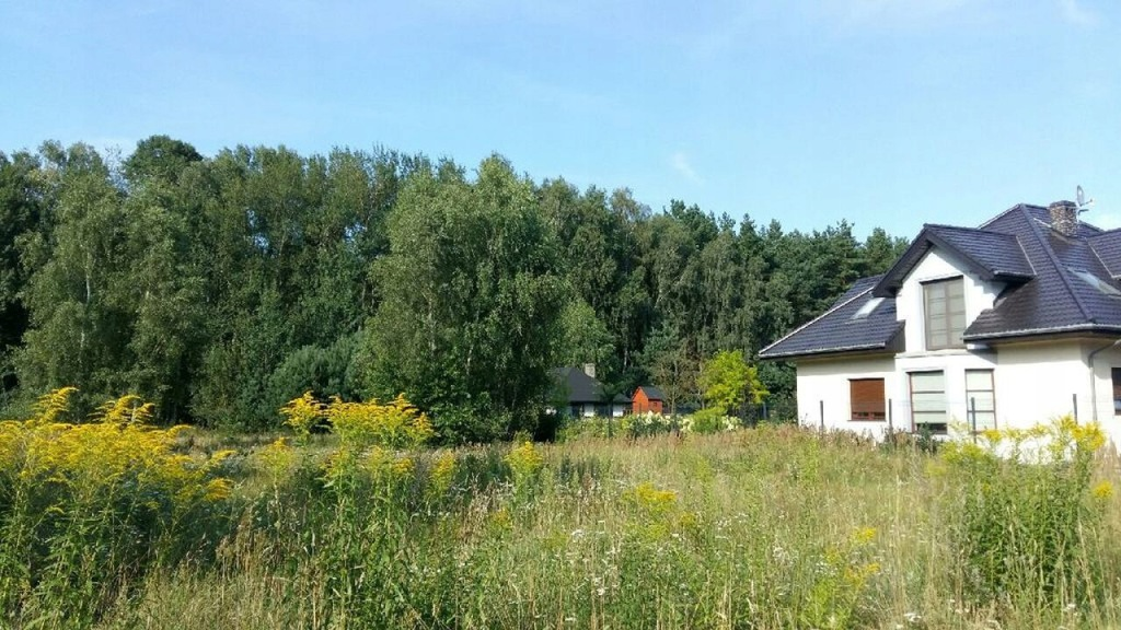 Działka, Dobra, Dobra (Szczecińska) (gm.)1096 m²