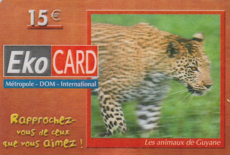Gujana Fr. - Jaguar