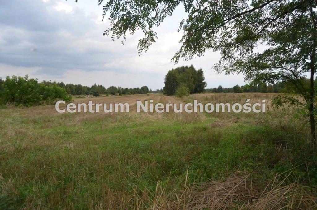 Działka, Rembieszów, Zapolice (gm.), 10300 m²