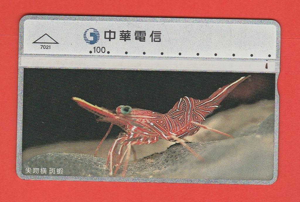 TAJWAN fauna morska / 7021 / seria 660D