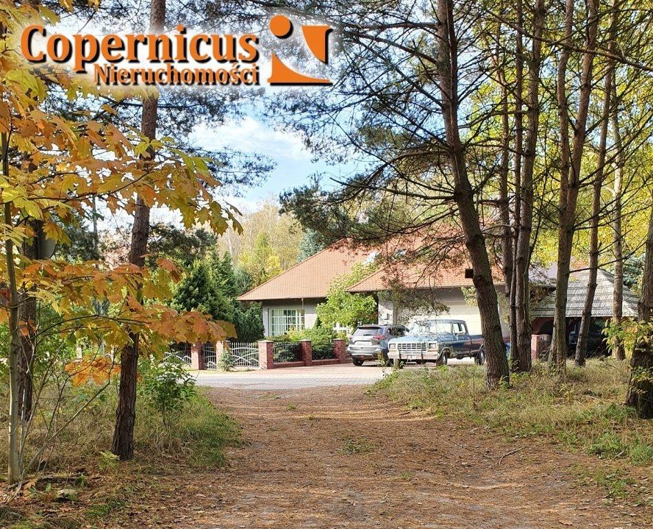 Dom, Osielsko, Osielsko (gm.), 300 m²