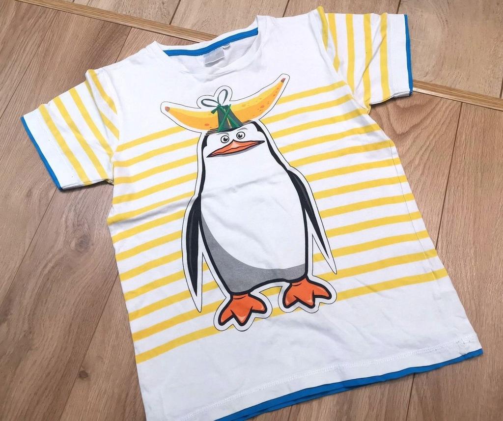 Koszulka t-shirt 134cm Pingwiny Madagaskar Smyk