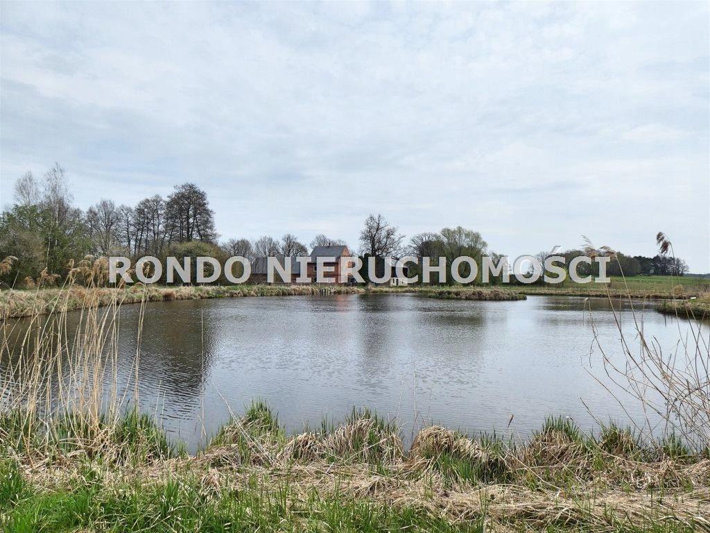 Działka, Międzybórz (gm.), 36000 m²