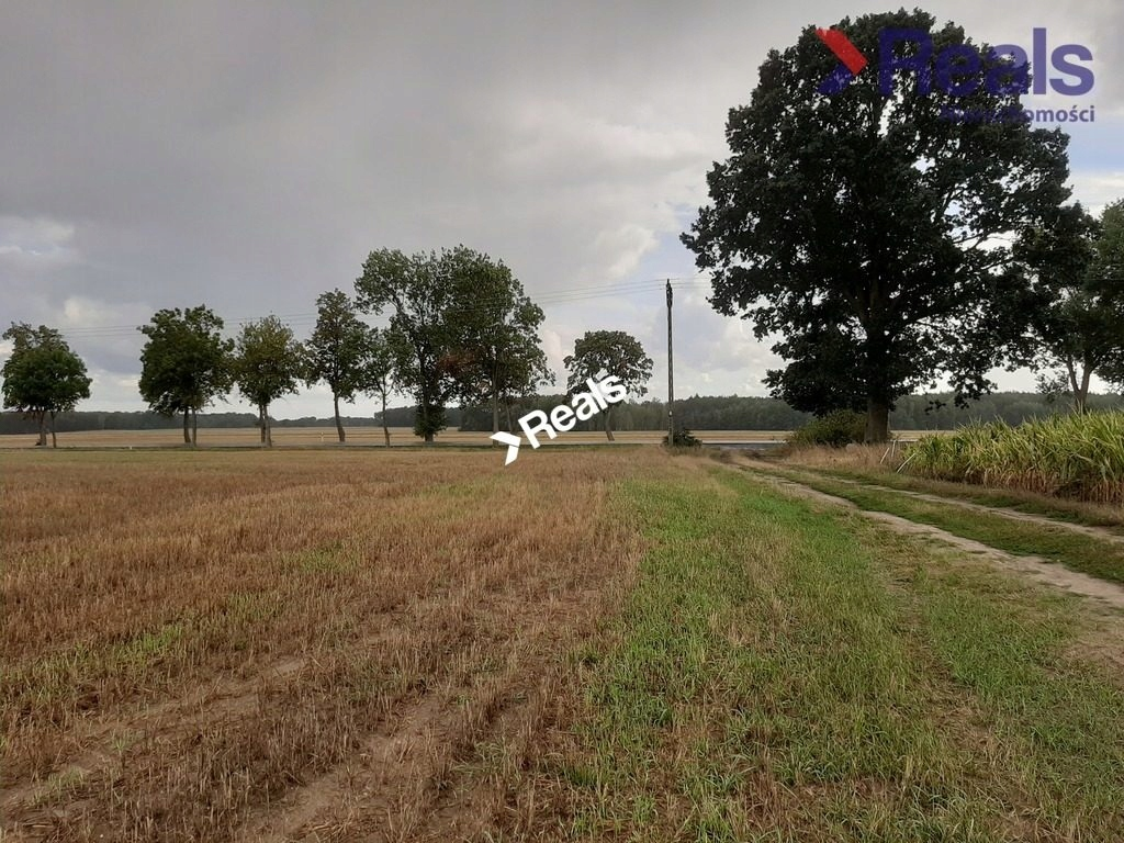 Działka, Bobrzany, Małomice (gm.), 50000 m²