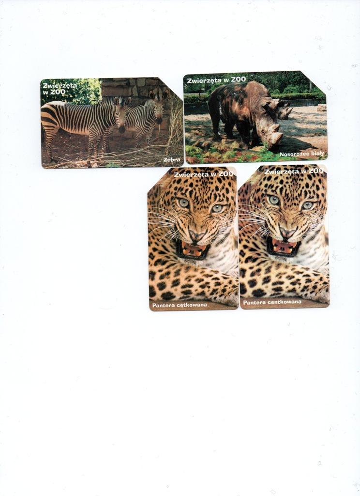 Karty magnetyczne-zwierzęta