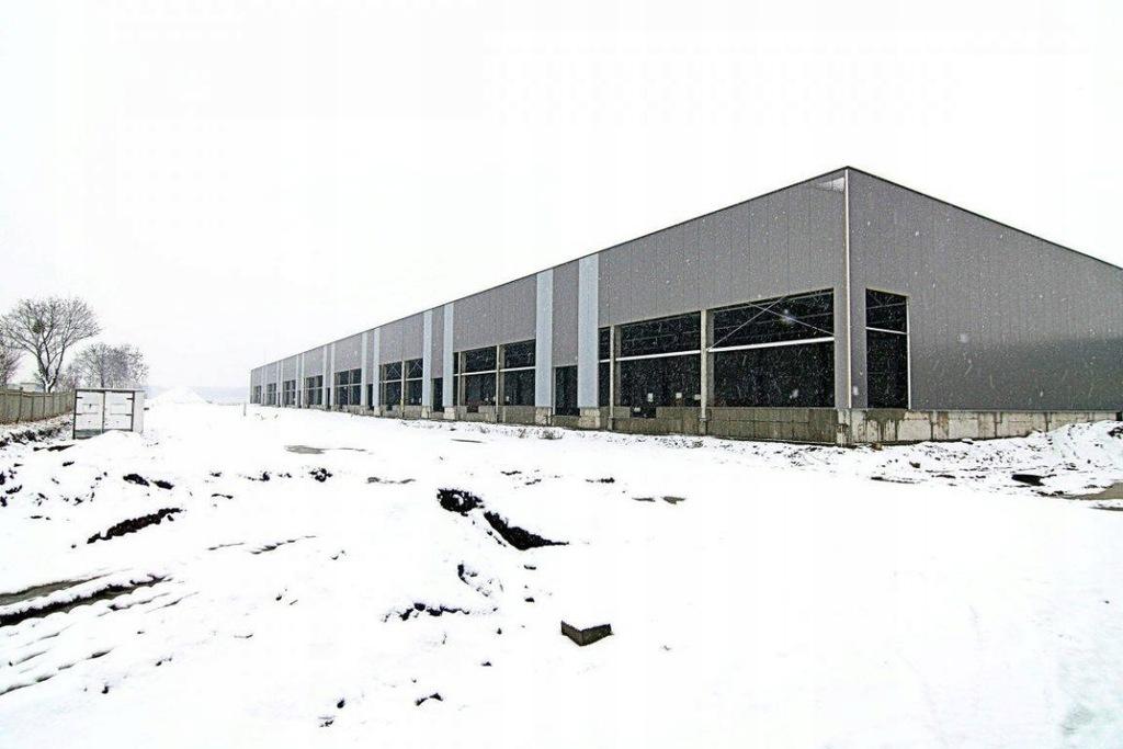 Komercyjne, Wrocław, Krzyki, 4200 m²