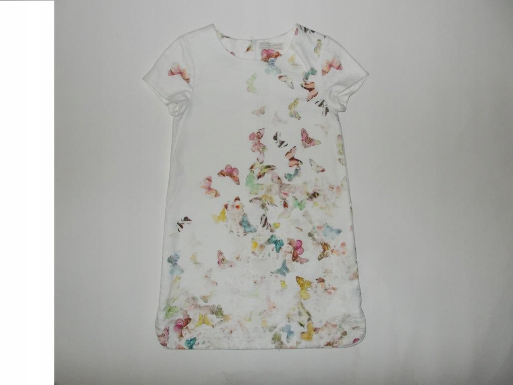 sukienka zara motyl dziewczynka