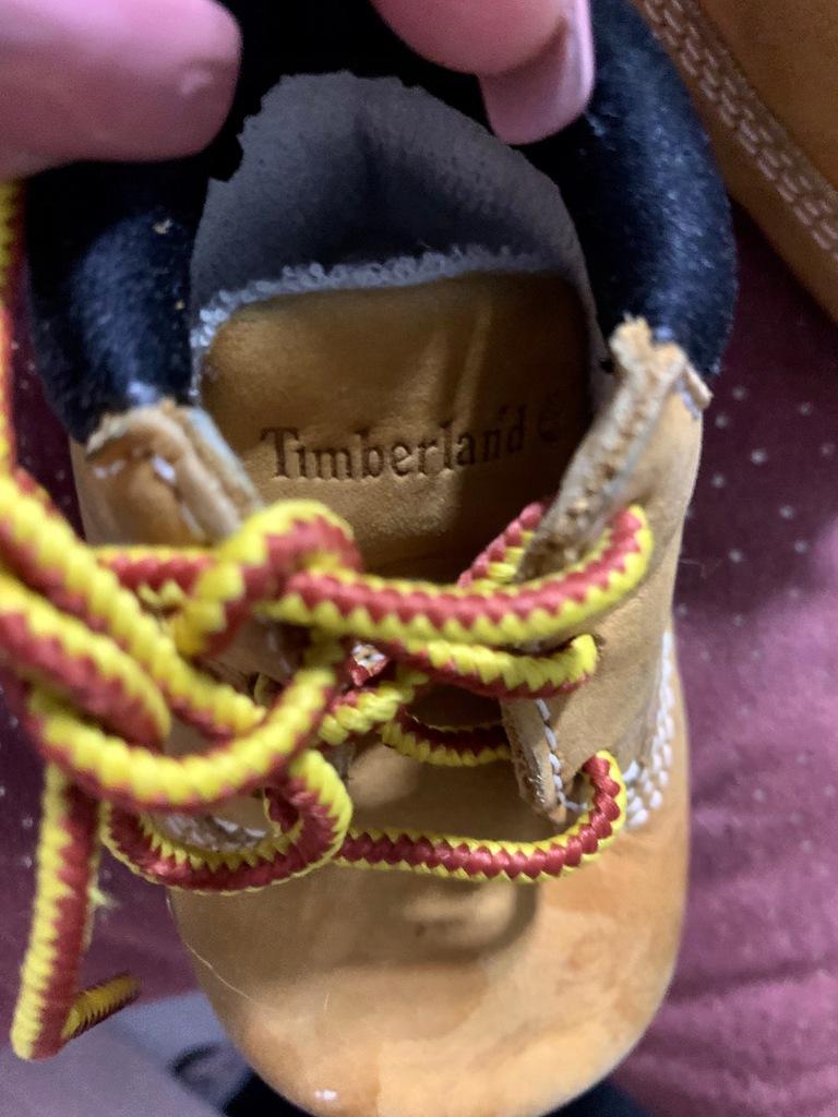 Buciki niechodki Timberland 16 wkładka 9 cm