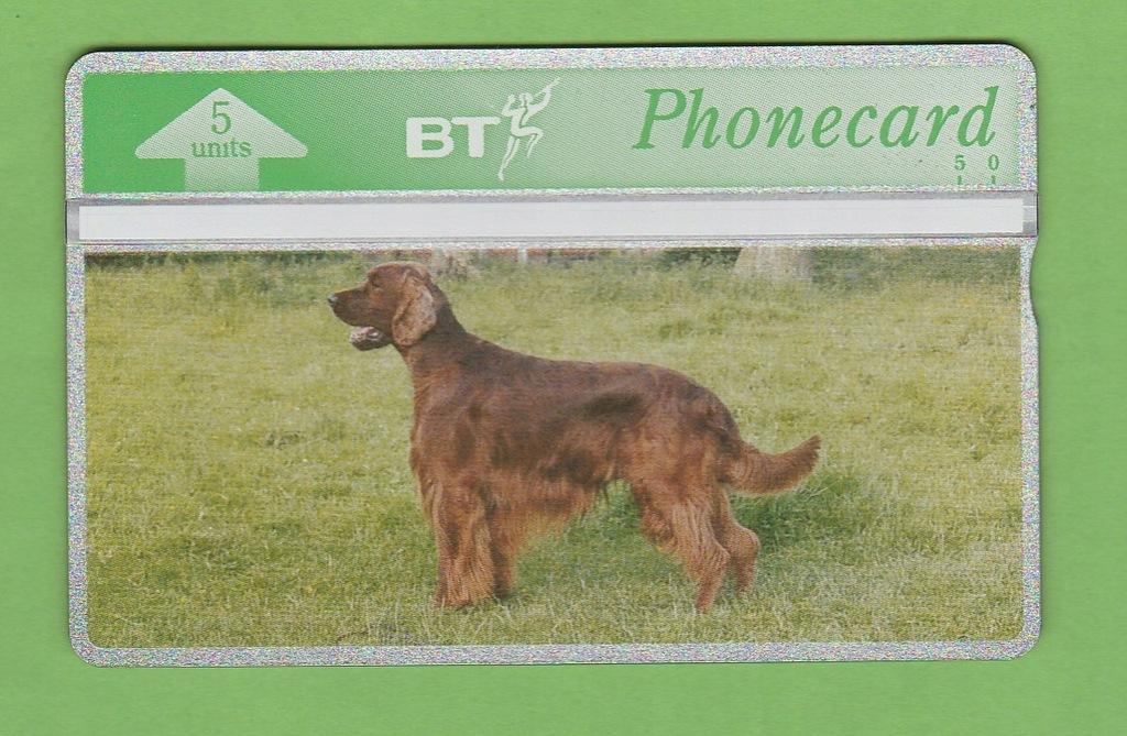 WIELKA BRYTANIA pełna fauna pies / seria 327C
