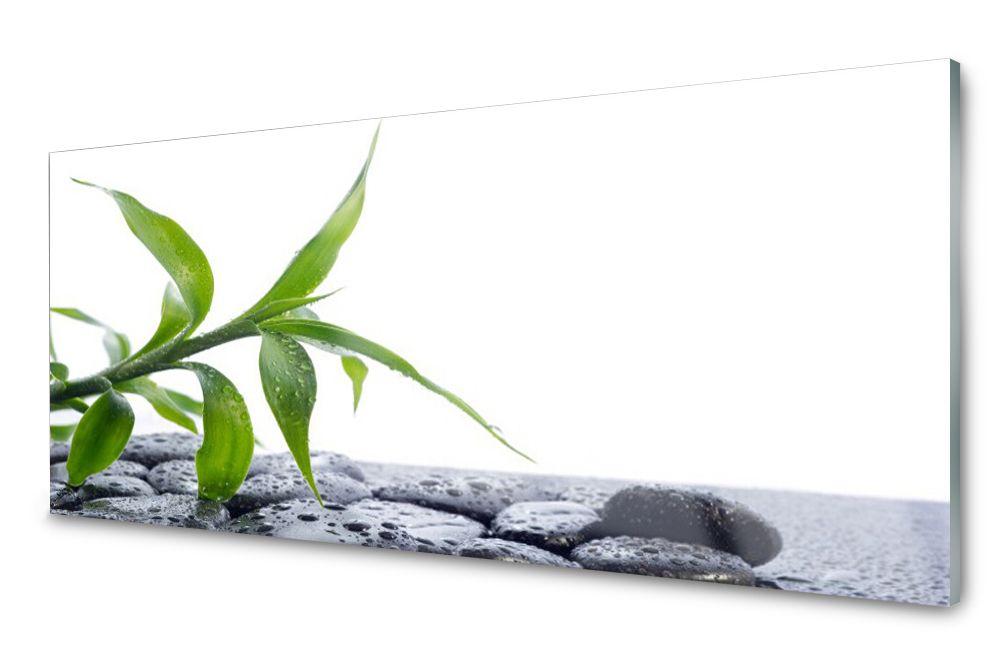 Lacobel Panel Szklany Ścienny Liść Roślina 120x60