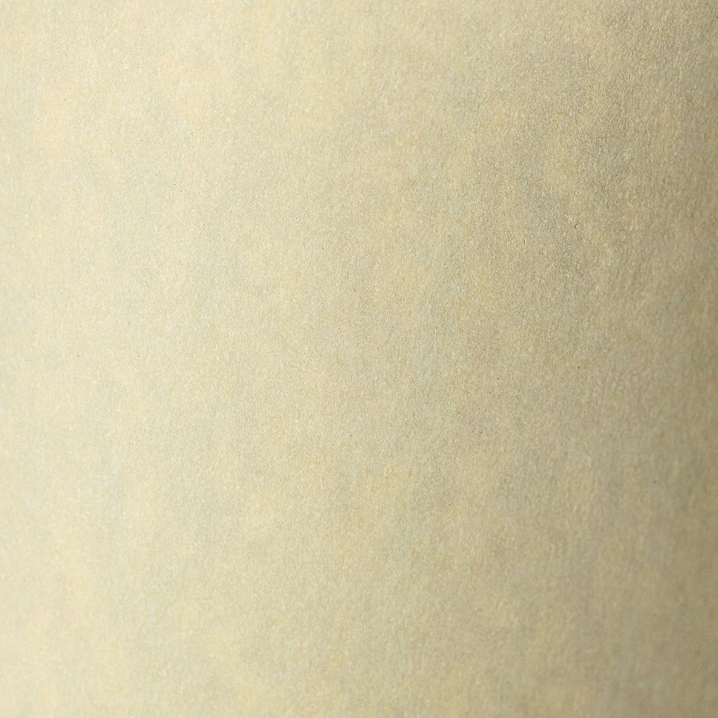 Karton ozdobny Standard Granit 220g/20ark. kremowy