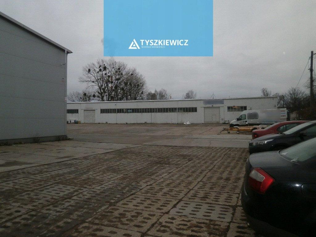 Magazyny i hale, Gdańsk, Rudniki, 4831 m²