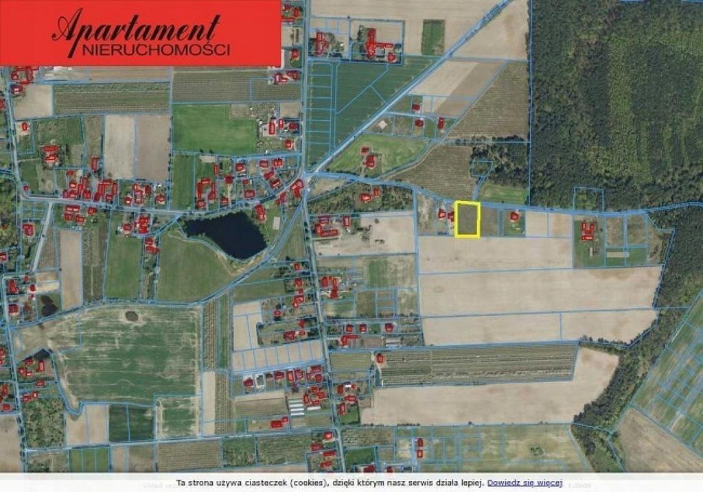 Działka, Mochle, Sicienko (gm.), 3000 m²
