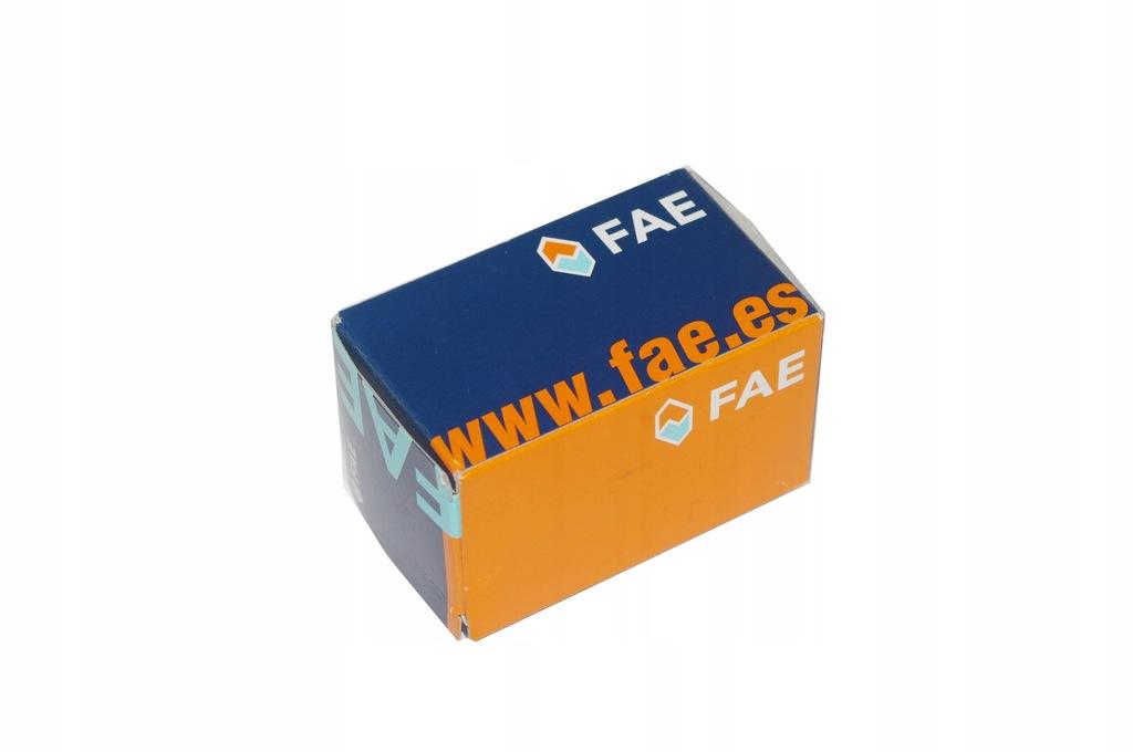 Zawór sterujący FAE 55012