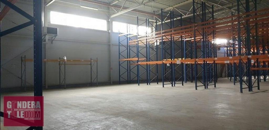 Komercyjne, Zakrzewo, Dopiewo (gm.), 1180 m²
