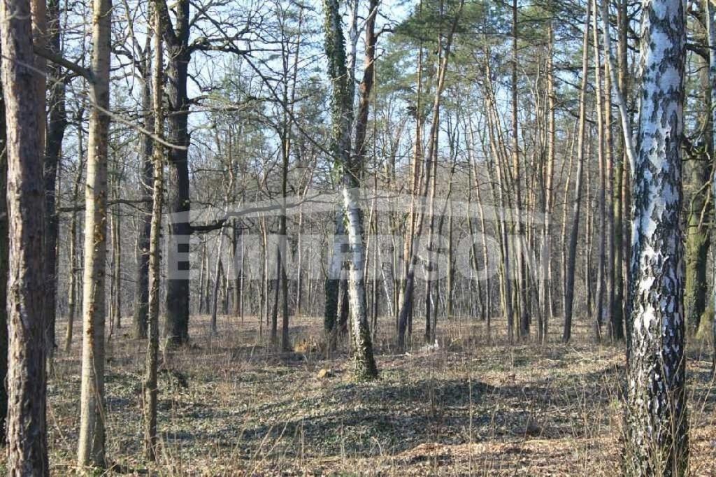 Działka Józefów, otwocki, 1200,00 m²
