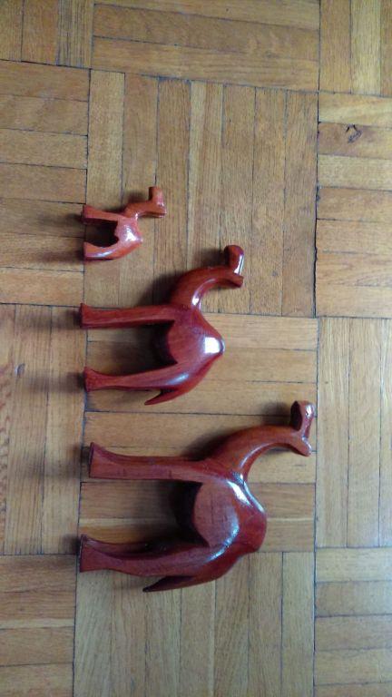 Trzy wielbłądy z Maroka