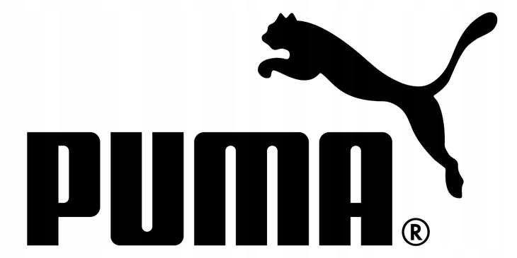 BUTY ROBOCZE Puma Velocity Wns Low S3 damskie
