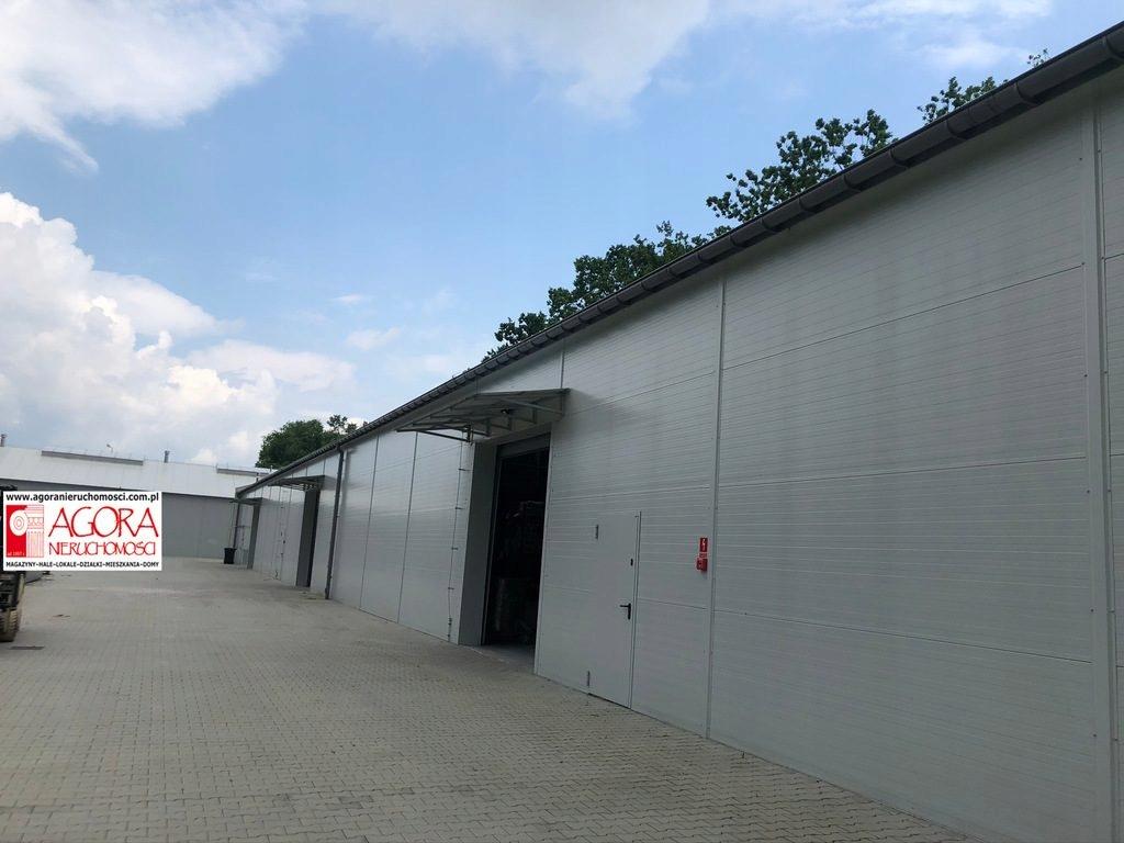 Magazyny i hale, Niepołomice, 4200 m²