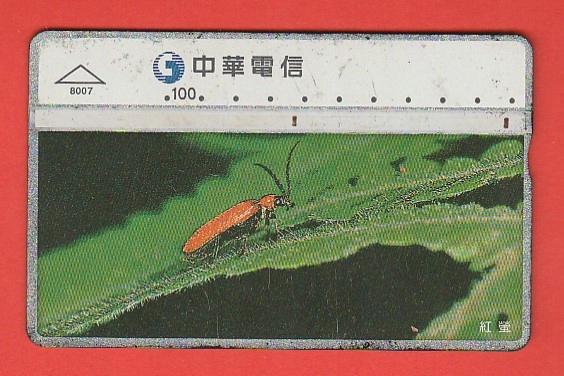 TAJWAN fauna chrząszcz / 8007 / seria 841H