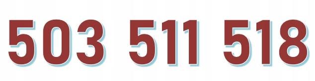 503 511 518 ORANGE ŁATWY ZŁOTY NUMER starter