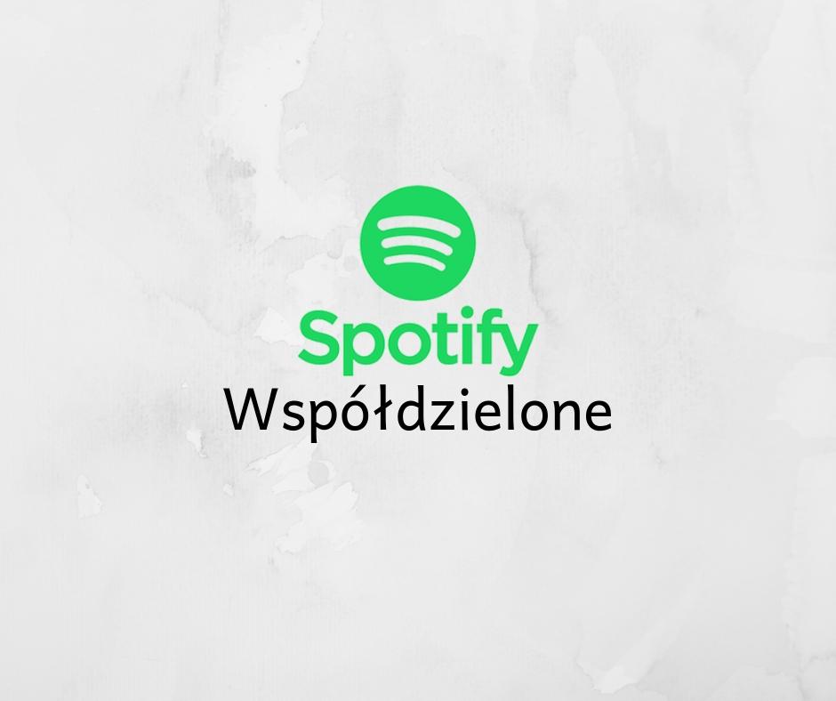 Spotify Konta Wspoldzielone Tanio 7925661813 Oficjalne Archiwum Allegro