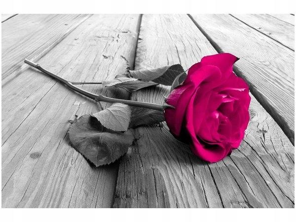 60x40cm Róża na moście obraz druk dekoracja ścienn