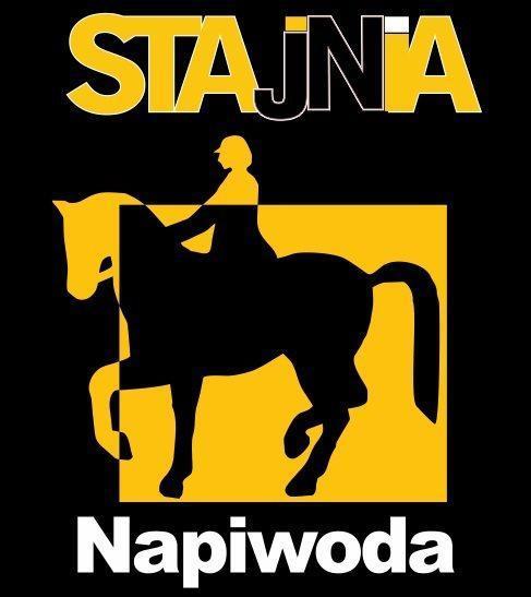 Karnet w szkółce jeździeckiej Stajnia Napiwoda