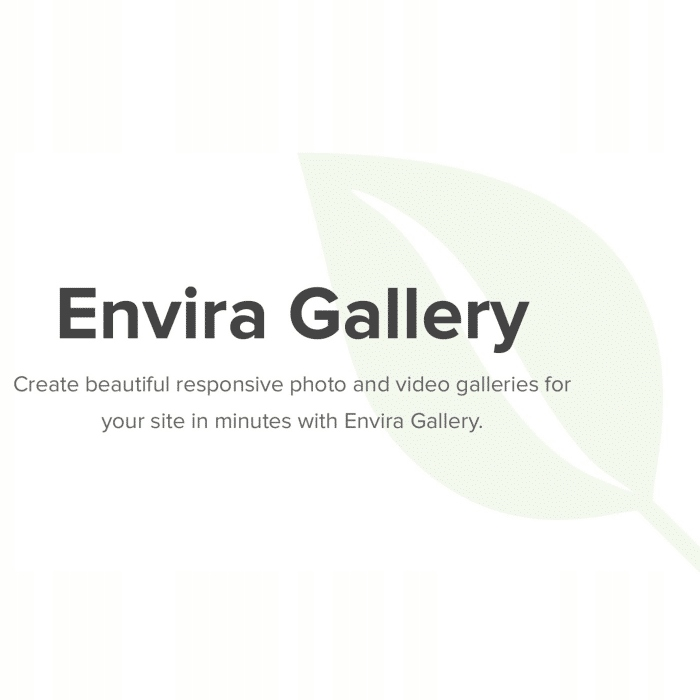 Wtyczka WordPress Envira Gallery