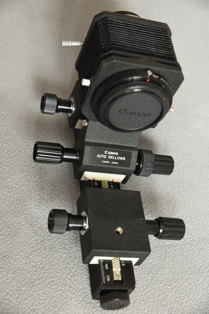 Canon FD miech auto-bellows świetny stan