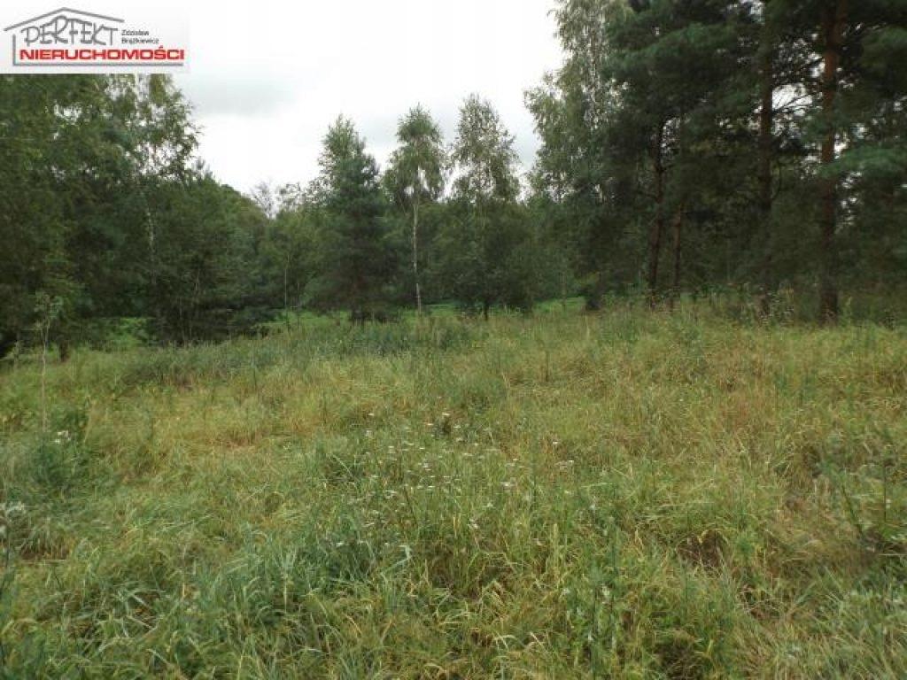 Działka, Sumówko, Zbiczno (gm.), 3000 m²