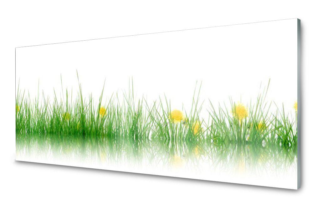Lacobel Panel Szklany Ścienny Trawa Kwiaty 120x60