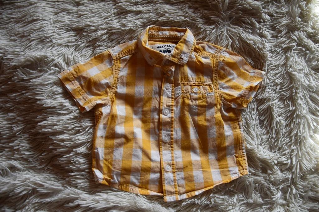 Koszula chłopięca Next 3-6 miesięcy NOWA