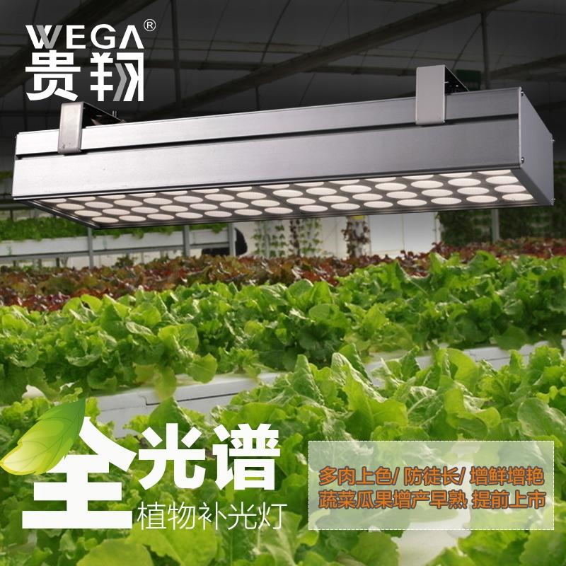 Lampa LED Hodowli Roślin GROW nieużywana 400-800nm